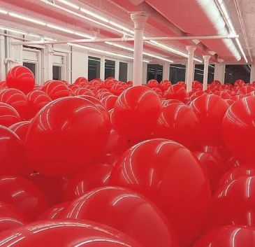 99 red balloons   Forrest.CC